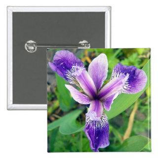 Botón púrpura del iris pin cuadrado