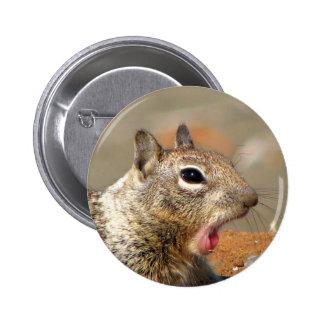 Botón redondo de bostezo de la ardilla pin redondo de 2 pulgadas