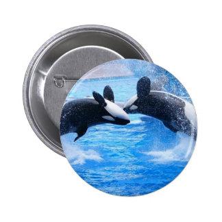 Botón redondo de la foto de la ballena pin