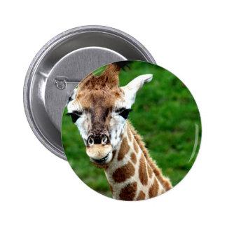 Botón redondo de la foto de la jirafa pin redondo de 2 pulgadas