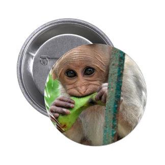 Botón redondo de la imagen divertida del mono pins