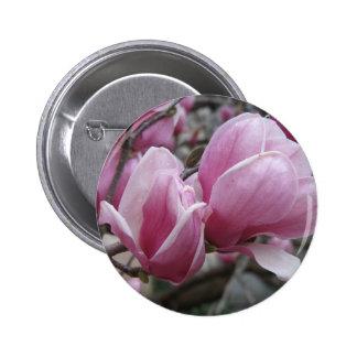 Botón redondo de la magnolia pins