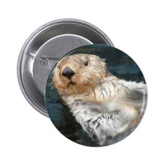 Botón redondo de la nutria de mar pins