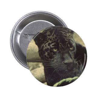 Botón redondo de la pantera negra pin
