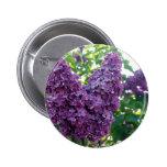 Botón redondo de las lilas púrpuras pins