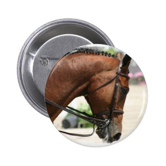 Botón redondo del caballo del Dressage Pins