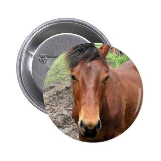 Botón redondo del caballo excelente de la castaña pins
