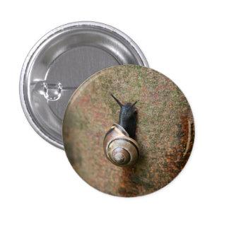 Botón redondo del caracol pin redondo de 1 pulgada