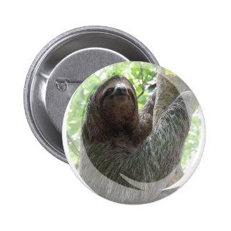 Botón redondo del diseño de la foto de la pereza pins