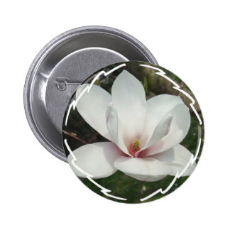 Botón redondo del flor de la magnolia