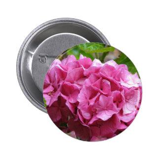 Botón redondo del Hydrangea rosado Pins