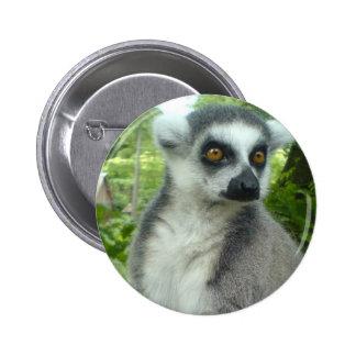 Botón redondo del Lemur de Madagascar Pin