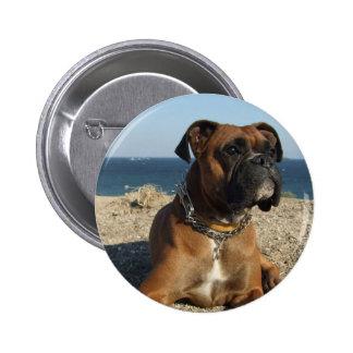 Botón redondo del perro lindo del boxeador pins