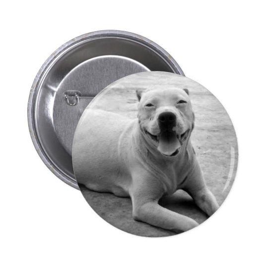 Botón redondo del pitbull feliz pin redondo de 2 pulgadas