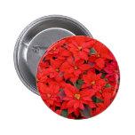 Botón rojo de los Poinsettias Pins