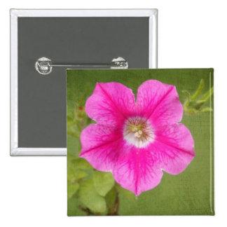 Botón rosado de la petunia
