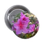 Botón rosado de las azaleas pins