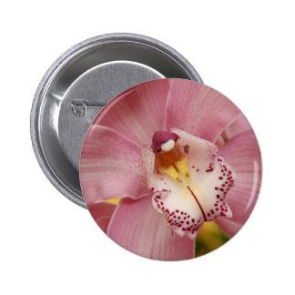 Botón rosado de las orquídeas pin