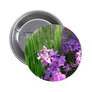 Botón rosado del Phlox y de la hierba Pins
