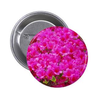 Botón rosado floreciente de la azalea