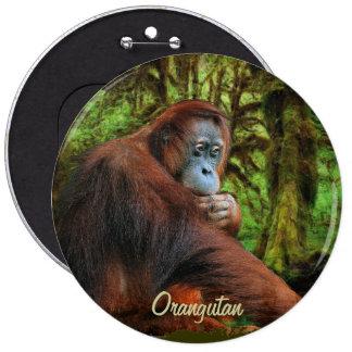 Botón salvaje del arte del orangután y del primate pin redondo de 6 pulgadas