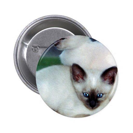 Botón siamés de los gatitos pins