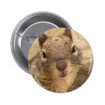 Botón sonriente de la ardilla pin