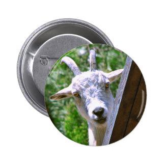 Botón sonriente de la cabra pin redondo de 2 pulgadas