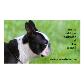 Boton Terrier business cards