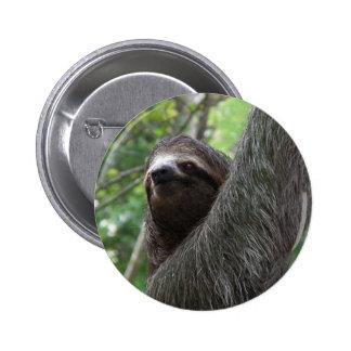 Botón tocado con la punta del pie dos de la pereza pin