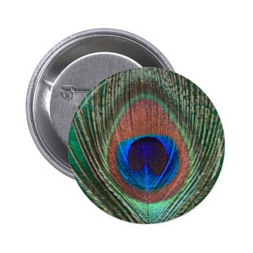 Botón verde de la pluma del pavo real pins