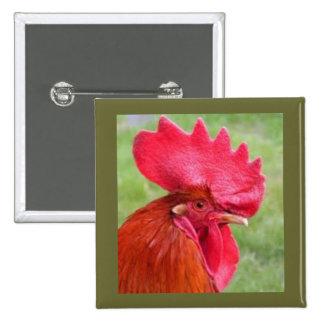 Botón vivo de Coutry del gallo rojo Pin Cuadrado