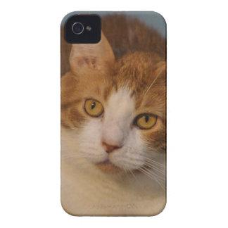 Botones de la abrazo iPhone 4 funda