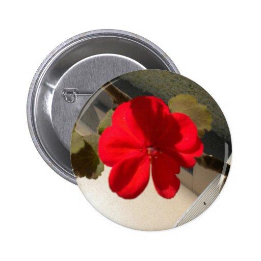 botones de la flor pin