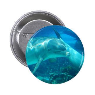 Botones juguetones de los delfínes pins