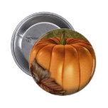 Botones redondos decorativos de la calabaza gigant pin
