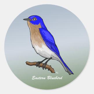 Botones y instinto del este del Bluebird rev 2 0 Etiquetas