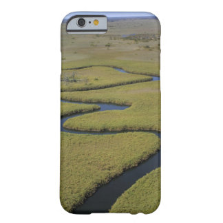 Botswana, Africa. Arial view Okavango river. Barely There iPhone 6 Case