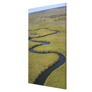 Botswana, Africa. Arial view Okavango river. Canvas Print