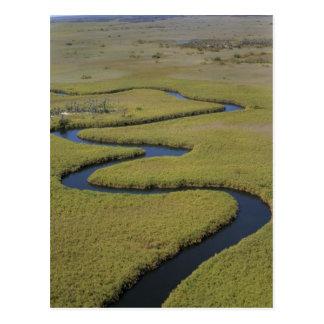 Botswana, África. Río de Okavango de la opinión de Postal