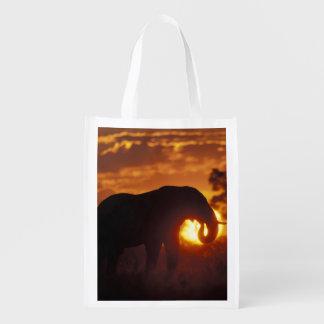 Botswana, Chobe National Park, Bull Elephant Reusable Grocery Bags