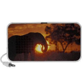 Botswana, Chobe National Park, Bull Elephant Mini Speaker