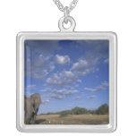 Botswana, Chobe National Park, Charging Elephant Square Pendant Necklace