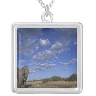 Botswana, Chobe National Park, Charging Elephant Silver Plated Necklace