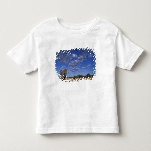 Botswana, Chobe National Park, Charging Elephant T-shirt