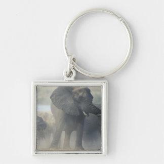 Botswana, Chobe National Park, Elephant herd 2 Keychain