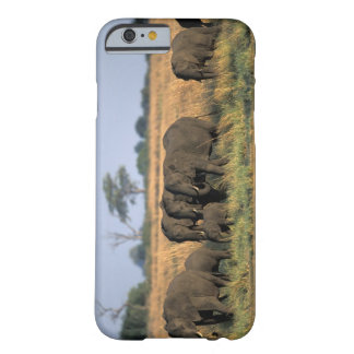 Botswana, Chobe National Park, Elephant herd Barely There iPhone 6 Case