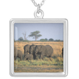Botswana, Chobe National Park, Elephant herd Silver Plated Necklace