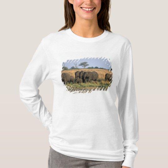 Botswana, Chobe National Park, Elephant herd T-Shirt