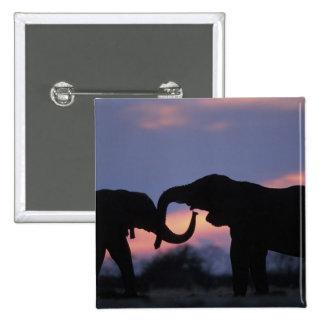 Botswana Chobe National Park Elephants Buttons